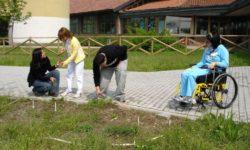 Attività di giardinaggio